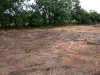 gravelpitfield130710-11
